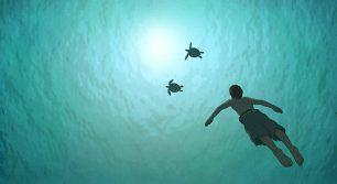 映画『レッドタートル ある島の物語』の試写会に5組10名様をご招待!
