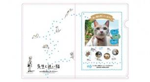 映画『先生と迷い猫』の特製クリアファイルを3名様にプレゼント!