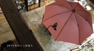 しっぽの傘「Tail」POP UP SHOP