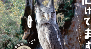 サンシャイン水族館プロデュース 化ケモノ展 in 福岡PARCO