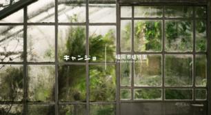 キャンジョ×福岡市植物園「たき火」イベント開催!