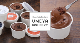カカオ豆産地別のチョコレートアイスが登場!